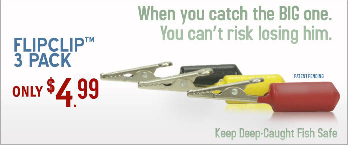 Buy the FlipClip, Don't Risk Losing the Big One.